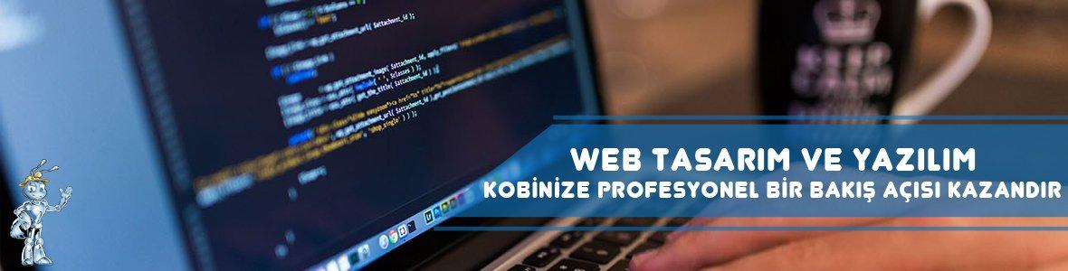 WEB TASARIM VE YAZILIM 1 - KOBİ'ler için Dijital Pazarlama Stratejileri